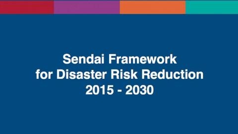 Sendai Framework for Disaster Risk Reduction 2015-30