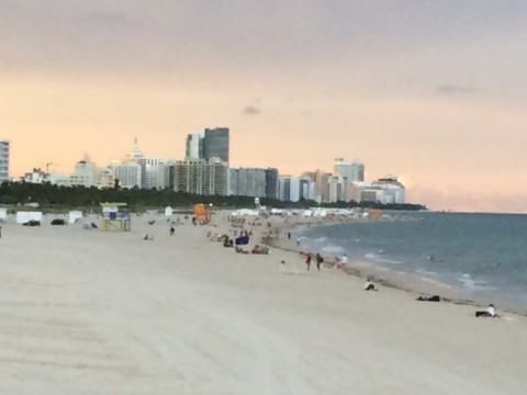 Eleven Ideas to Improve Miami Beach's Resilience Initiatives